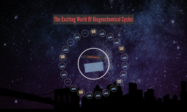 The Exciting World Of Biogeochemical Cycles