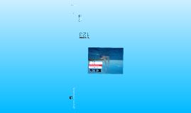 Copy of Port-Marine - Magic Market Solutions