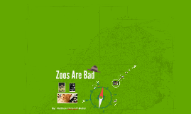 Zoos Are Bad