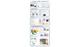 AP Bio- Cells 1:  Intro & Endomembrane System