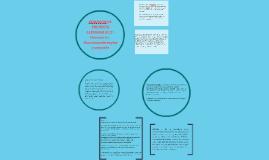 Copy of COMISION DE ENCUESTA ALEMANIA O.I.T