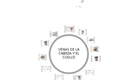 ARTERIAS Y VENAS DE CABEZA Y CUELLO
