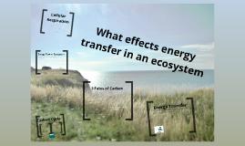 Ecosystems 2