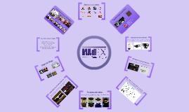 MAdEX 2013
