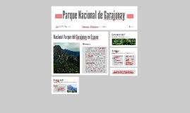 Copy of Parque Nacional de Garajonay