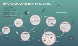 HIPOPLASIA CEREBELAR EN EL GATO.