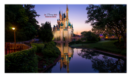 The Disney Way to enchant your students
