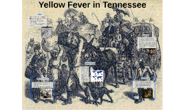 Yellow Fever in Tennesee