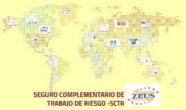 SEGURO COMPLEMETARIO DE TRABAJO DE RIESGO -SCTR