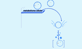 metabolismo I 2016
