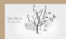 cesar chavez by daisy orenday on prezi
