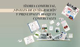 TEORIA COMERCIAL Y NIVELES DE INTEGRACION