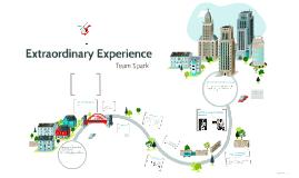 Copy of Extraordinary Experience