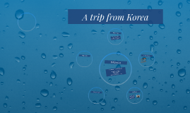 A trip from Korea