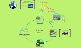 energy flow in our ecosystems