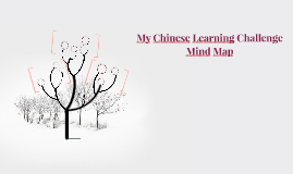 My Chinese Learning Challenge