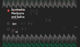 Salva and Spice