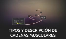 TIPOS Y DESCRIPCIÓN DE CADENAS MUSCULARES