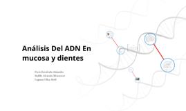 Copy of Análisis Del ADN En Pulpa Dental