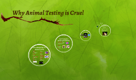 Why Animal Testing is Cruel
