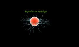 Reproduction Sociology