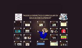 """Copy of """"MODELO DIDÁCTICO CURRICULAR"""""""
