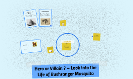 Hero or Villain – Look into the Life of Bushranger Musquito