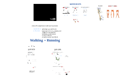 Biomechanics of Walking and Running