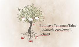 Budidaya Tanaman Talas