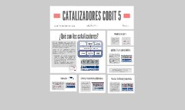 CATALIZADORES COBIT 5