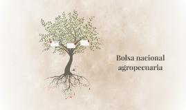 Bolsa nacional agropecuaria