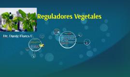 Reguladores Vegetales
