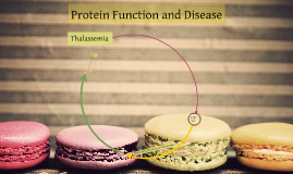 Protein Function and Disease
