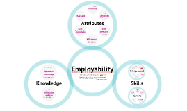 What is employability?
