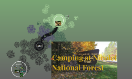 Camping at Nicolet National Forest