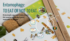 Copy of An Insect-Serving Restaurant as the First Part of Communication Strategy Promoting Entomophagy in Western World