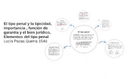 Copy of El tipo penal y la tipicidad, importancia , función de garan