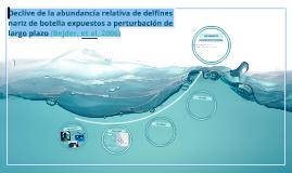 Declive de la abundancia relativa de delfines nariz de botel