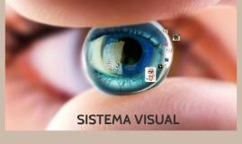 Copy of Copy of Sistema visual
