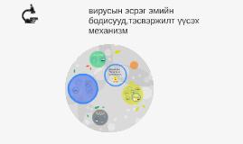 Copy of вирусын эсрэг эмийн бодисууд,тэсвэржилт үүсэх механизм