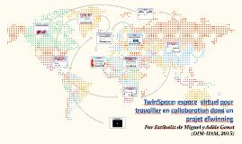 TwinSpace: espace virtuel pour travailler en collaboration dans un projet eTwinning  par Estíbaliz de Miguel et Adèle Genet