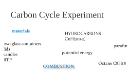 Modeling Current Carbon Cycling