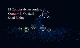 El Condor de los Andes, El Coquí y El Quetzal