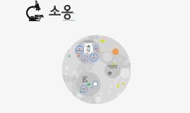 소옹, (1011~1077)