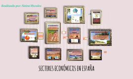 Copy of SECTORES ECONÓMICOS EN ESPAÑA