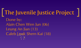 The Juvenile Justice Project