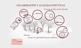 Criterios para evaluar Alianzas
