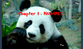 Chapter 1 : ANIMALS