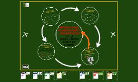 Copy of METODOLOGÍA Y ORGANIZACIÓN DE LA