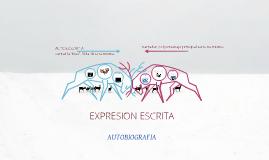 EXPRESION ESCRITA